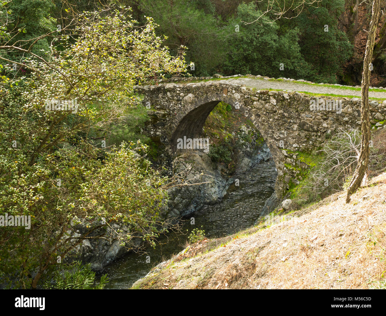 Small pedestrian  humpbacked bridge over small stream in Troodos Mountains Cyprus leading to a track in the forest - Stock Image
