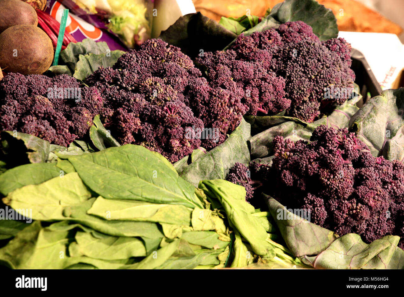 violet broccoli - Mercado de Tirana Market Hall - Stock Image
