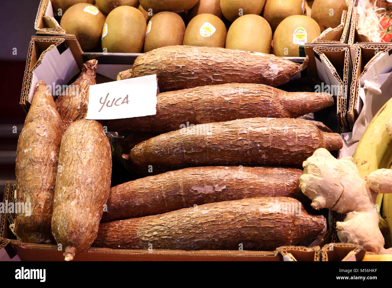 Yucca - Mercado de Tirana Market Hall - Stock Image
