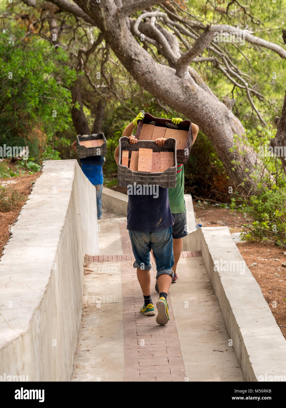 Workers carrying bricks to site by hand on the island of Capri, Italy. - Stock Image