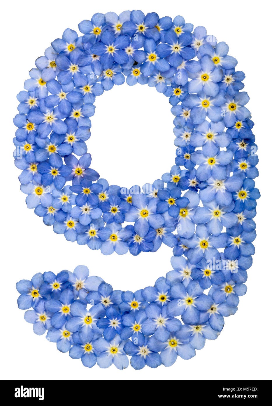 Arabic numeral 9, nine, from blue forget-me-not flowers - Stock Image