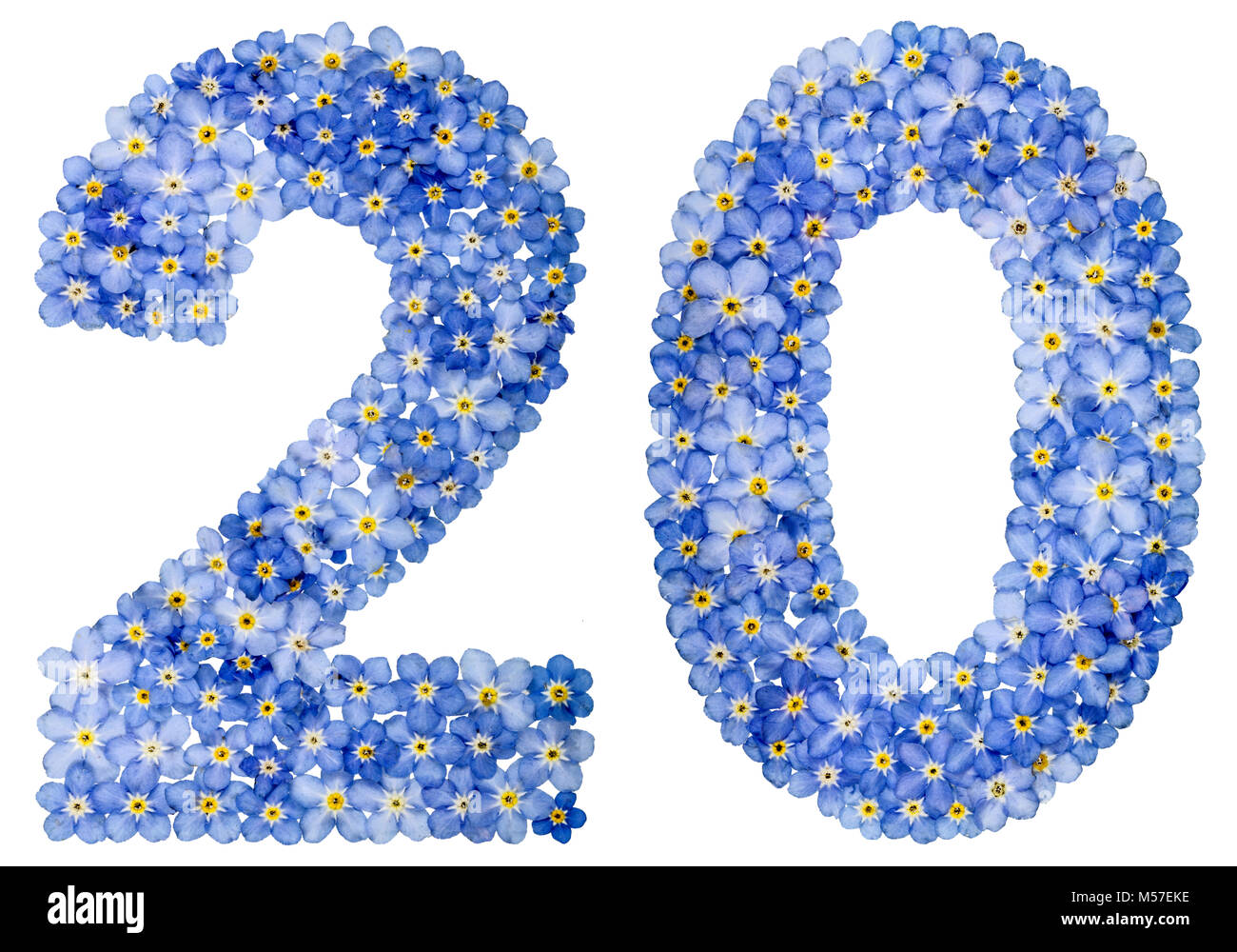 Arabic numeral 20, twenty, from blue forget-me-not flowers - Stock Image