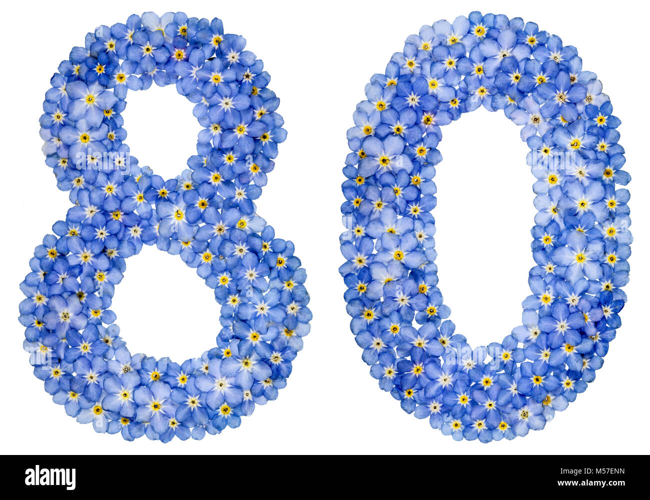 Arabic numeral 80, eighty, from blue forget-me-not flowers - Stock Image