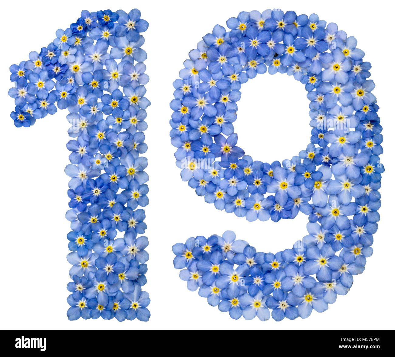Arabic numeral 19, nineteen, from blue forget-me-not flowers - Stock Image