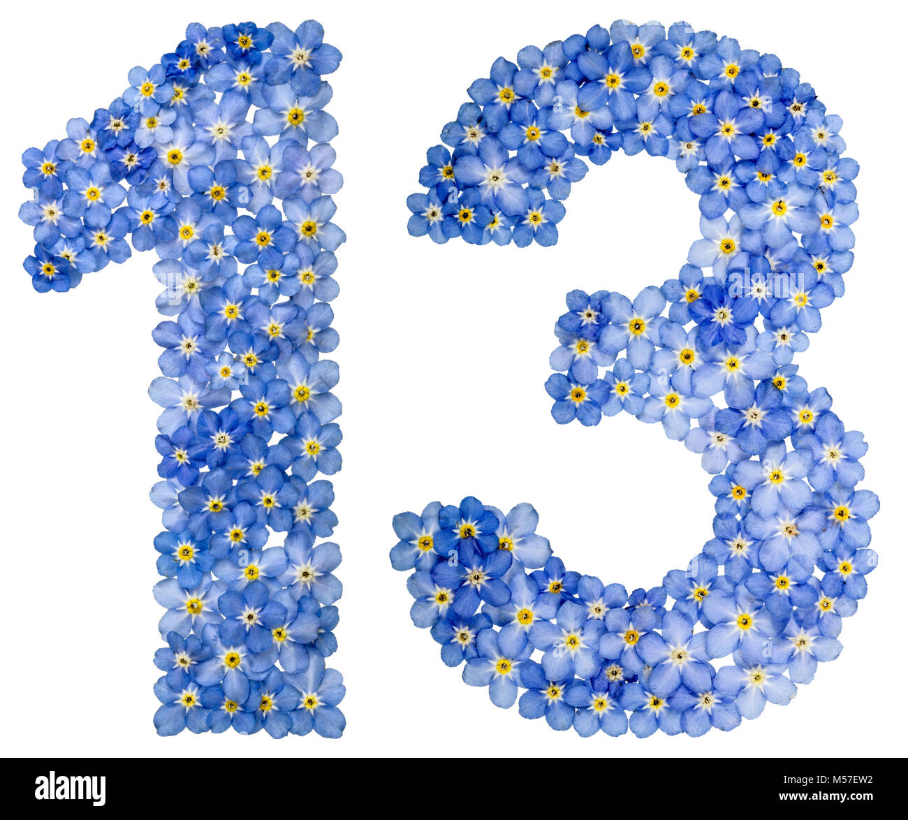 Arabic numeral 13, thirteen, from blue forget-me-not flowers - Stock Image