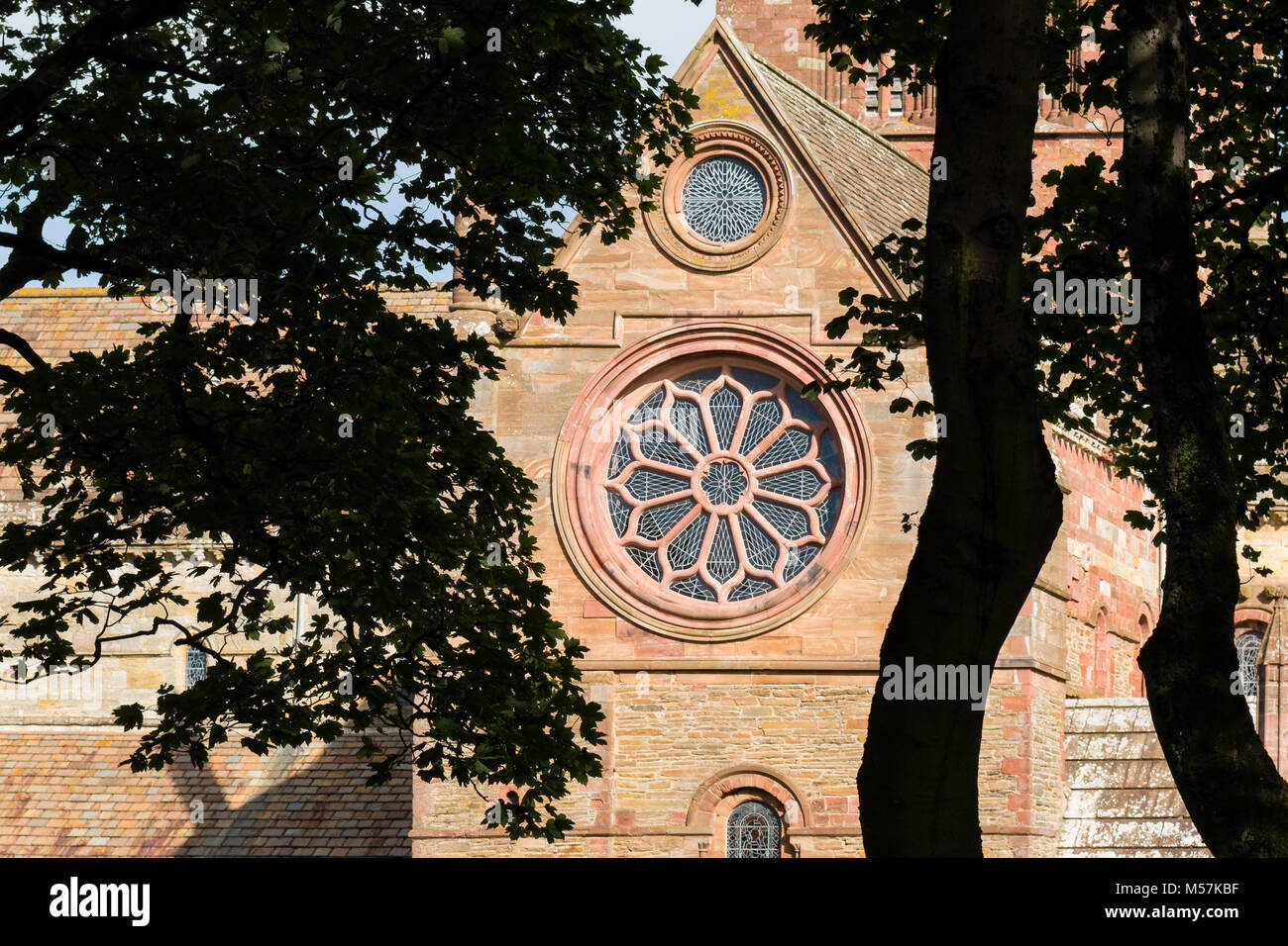 Reconstructed Rose window in the south transept of St Magnus Cathedral, Kirkwall, Orkney, Scotland - Stock Image