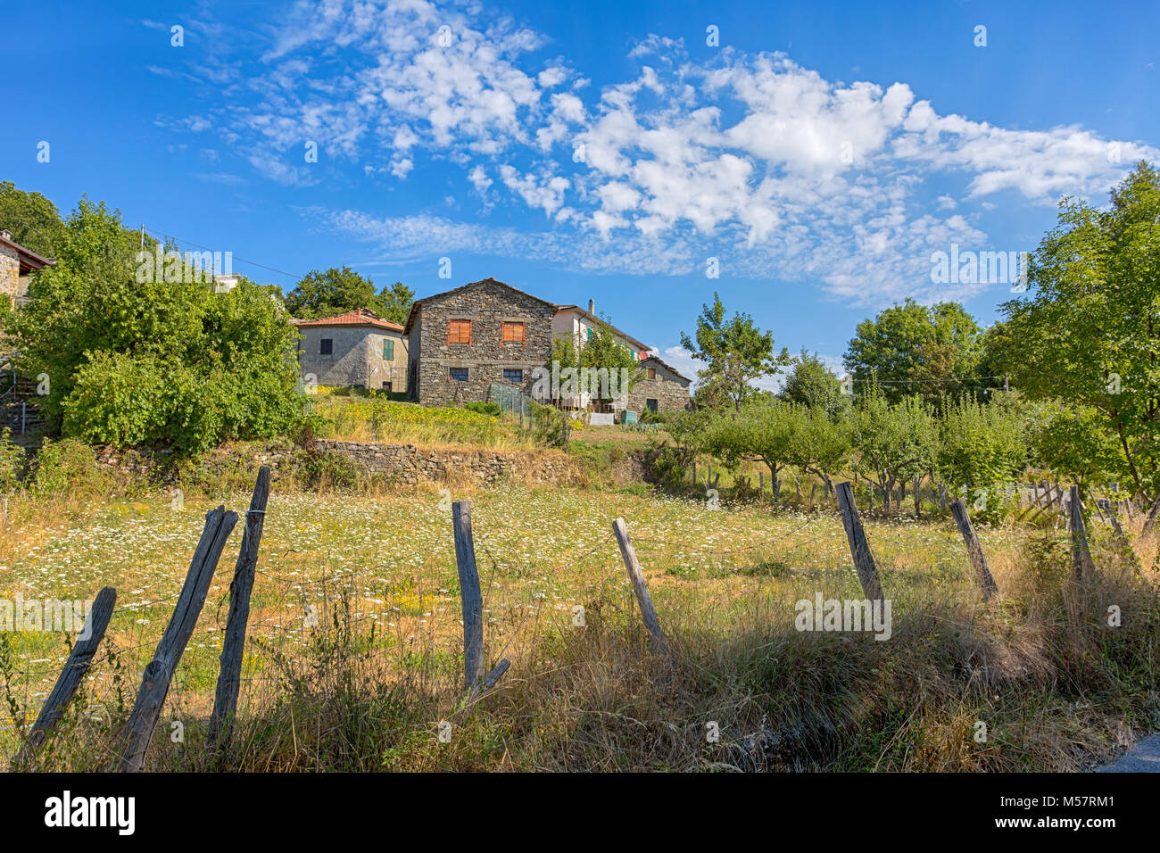 Group of stone country houses in a meadow full of flowers and trees. - Stock Image
