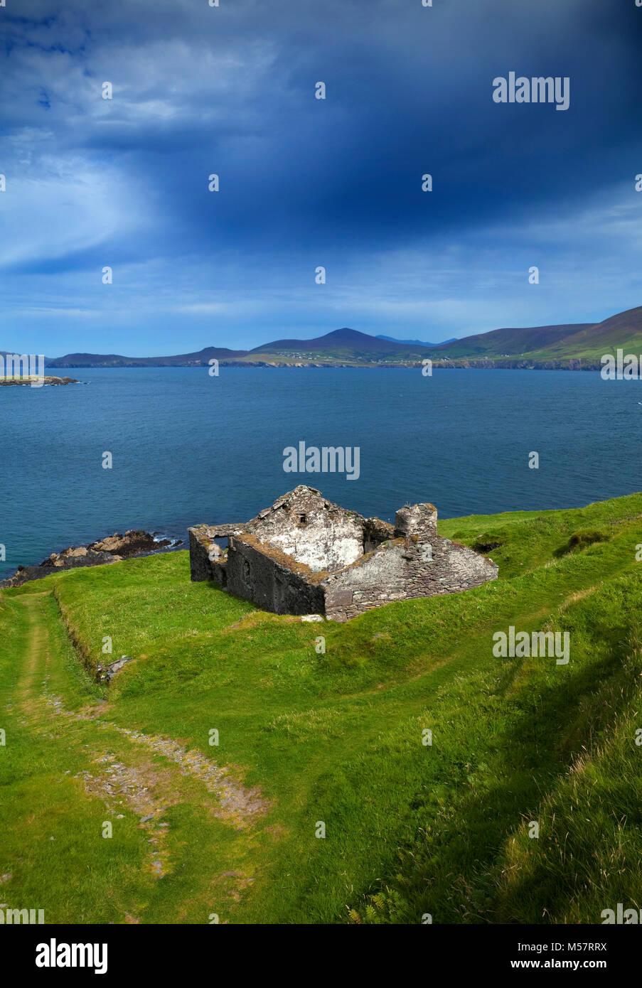 Deserted Cottage on Great Blasket Island, The Blasket Islands, Off Slea Head on the Dingle Peninsula, County Kerry, - Stock Image