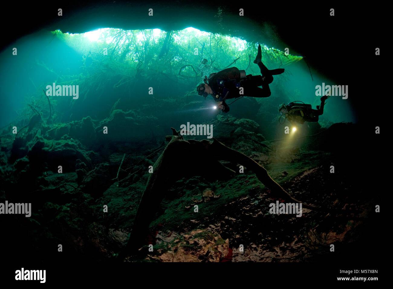 Cave diver at mouth of cave El Eden, Cenotes, Tulum, Yucatan, Quintana Roo, Mexico, Caribbean - Stock Image