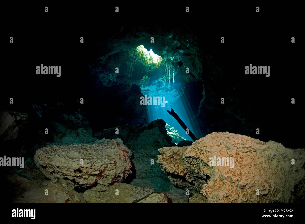 Sunbeams suffuse crystal clear water of cenote Taj Mahal, Cenotes, Tulum, Yucatan, Quintana Roo, Mexico, Caribbean - Stock Image