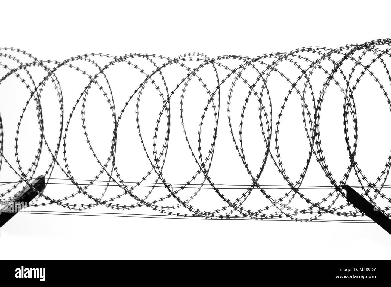 barbed wire fence isolated on white background Stock Photo ...