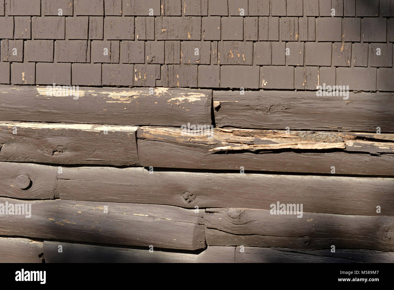 Grand Canyon Kolb Studio Renovation  . Repair and replacement of log siding - in some cases the original siding - Stock Image