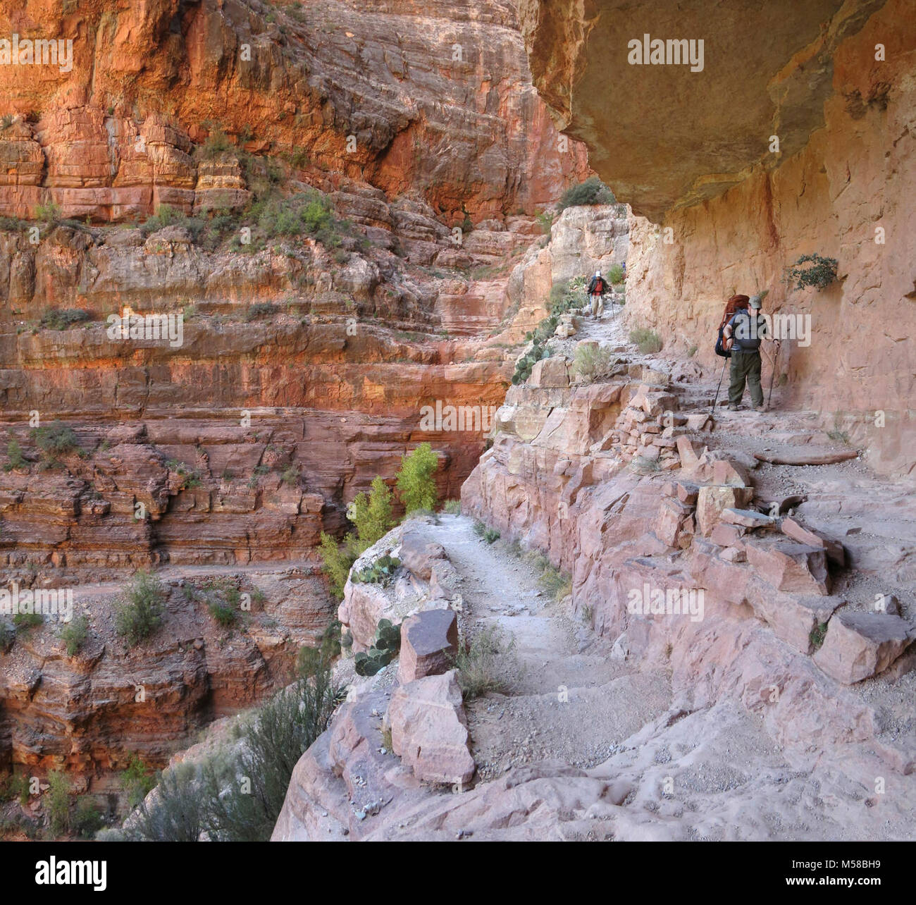 Grand Canyon National Park North Kaibab Trail in Redwall . Below Supai Tunnel, switchbacks continue to the massive - Stock Image