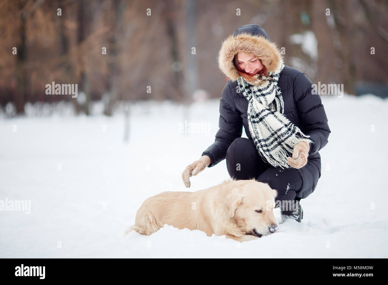Picture of woman squatting next to labrador in winter park - Stock Image