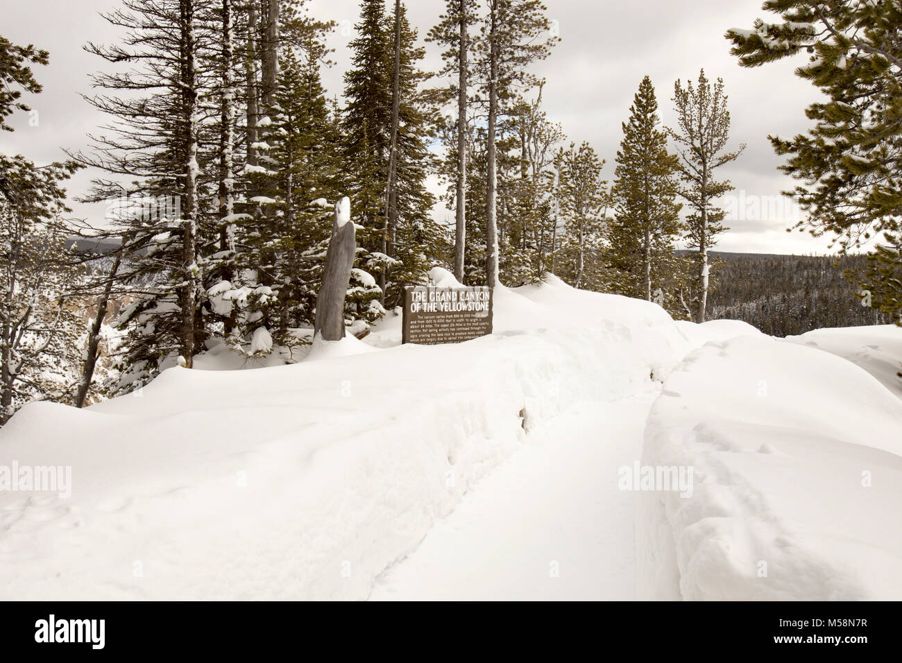 Snowy Path And Sign For The Grand Canyon Of Yellowstone