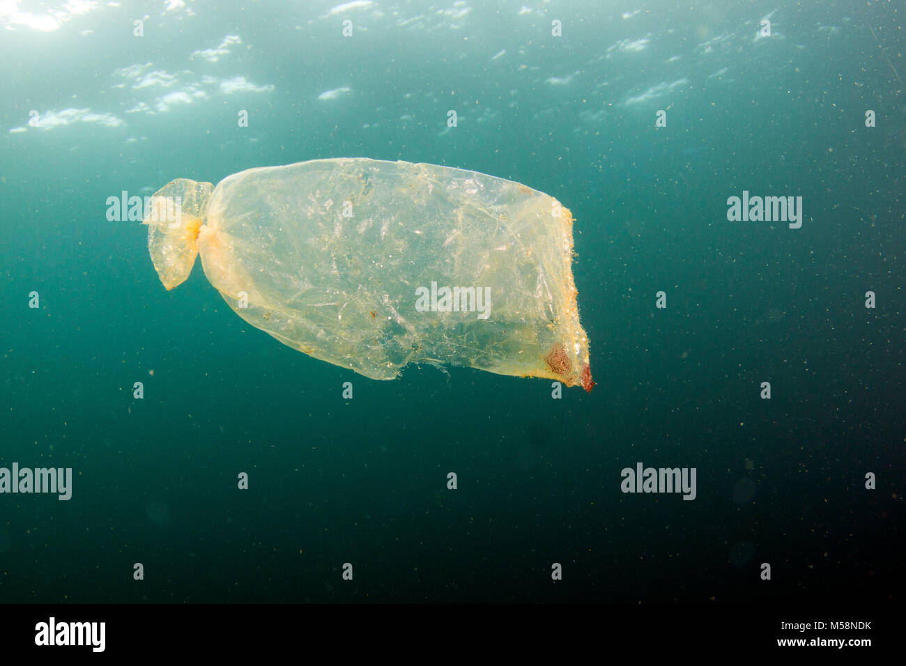 Currents accumulate marine debris in areas around the global ocean. - Stock Image
