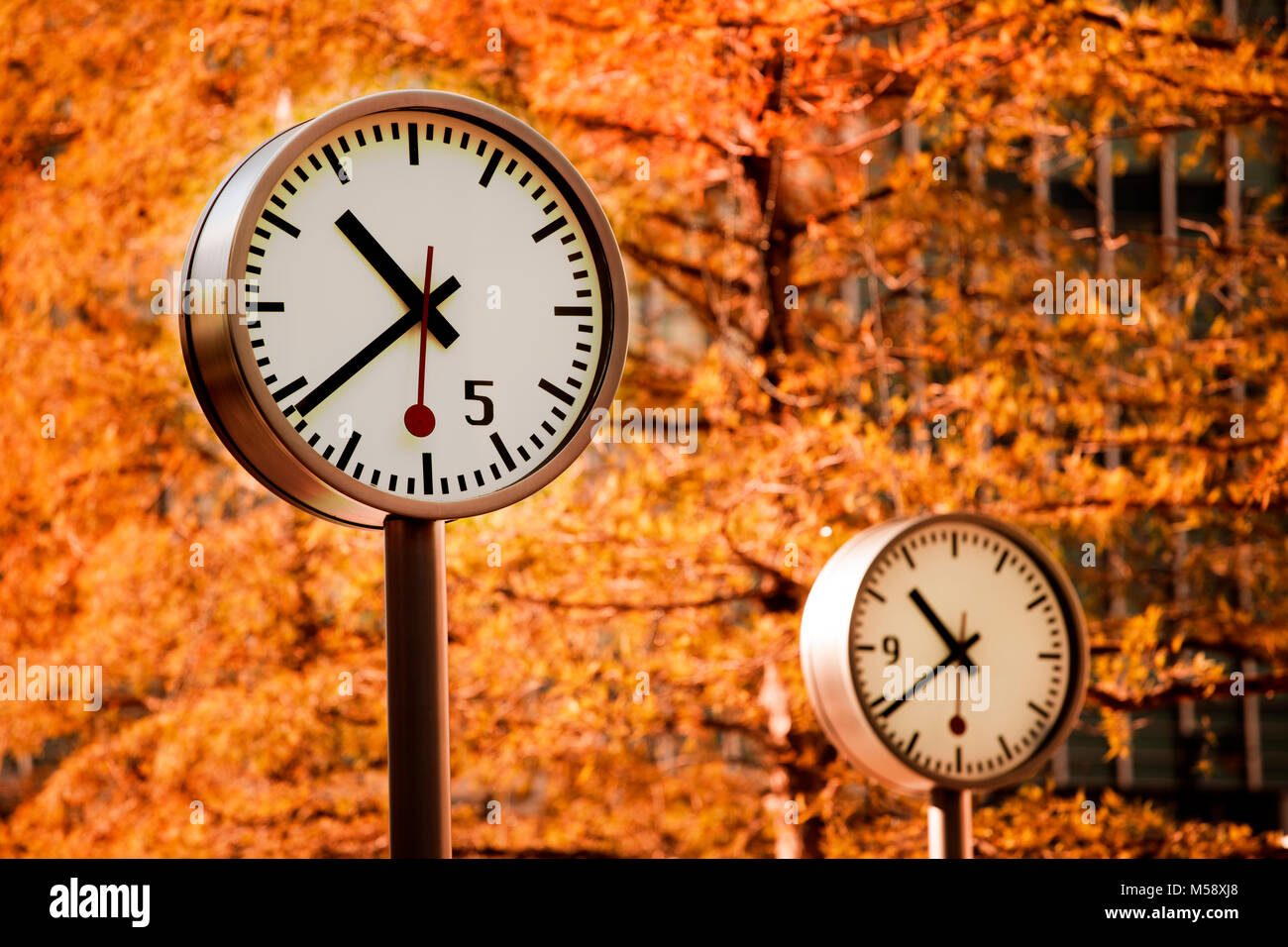Clocks in Autumn at Canary Wharf - Stock Image