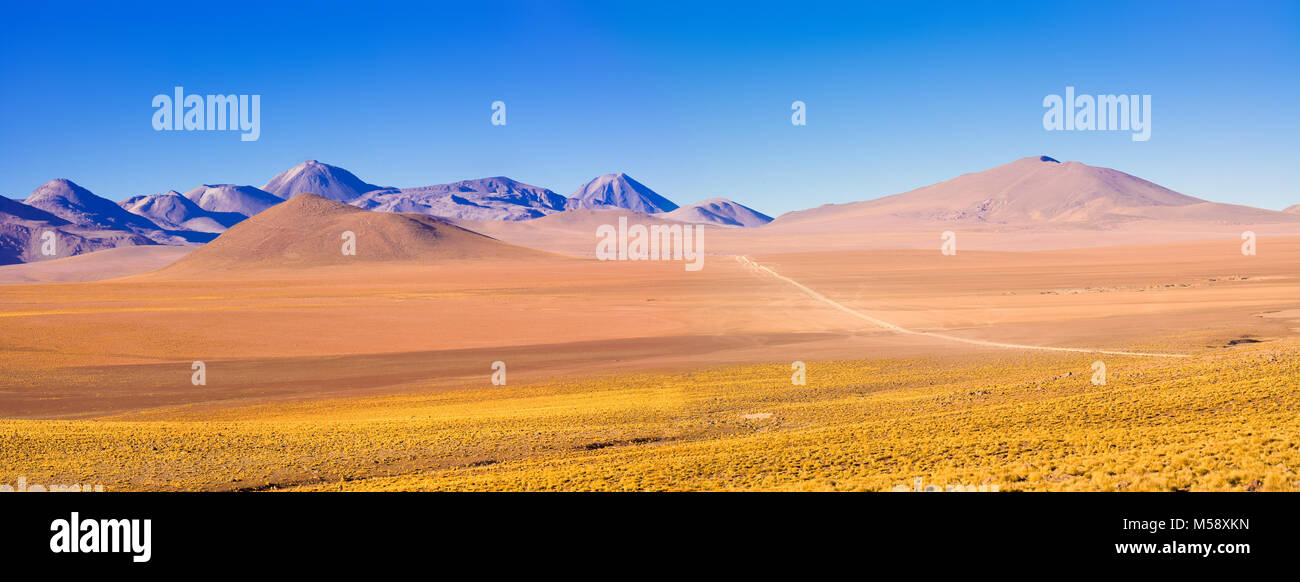 Altiplano landscape at over 4000 meters of altitude, Atacama Desert, Chile, South America - Stock Image