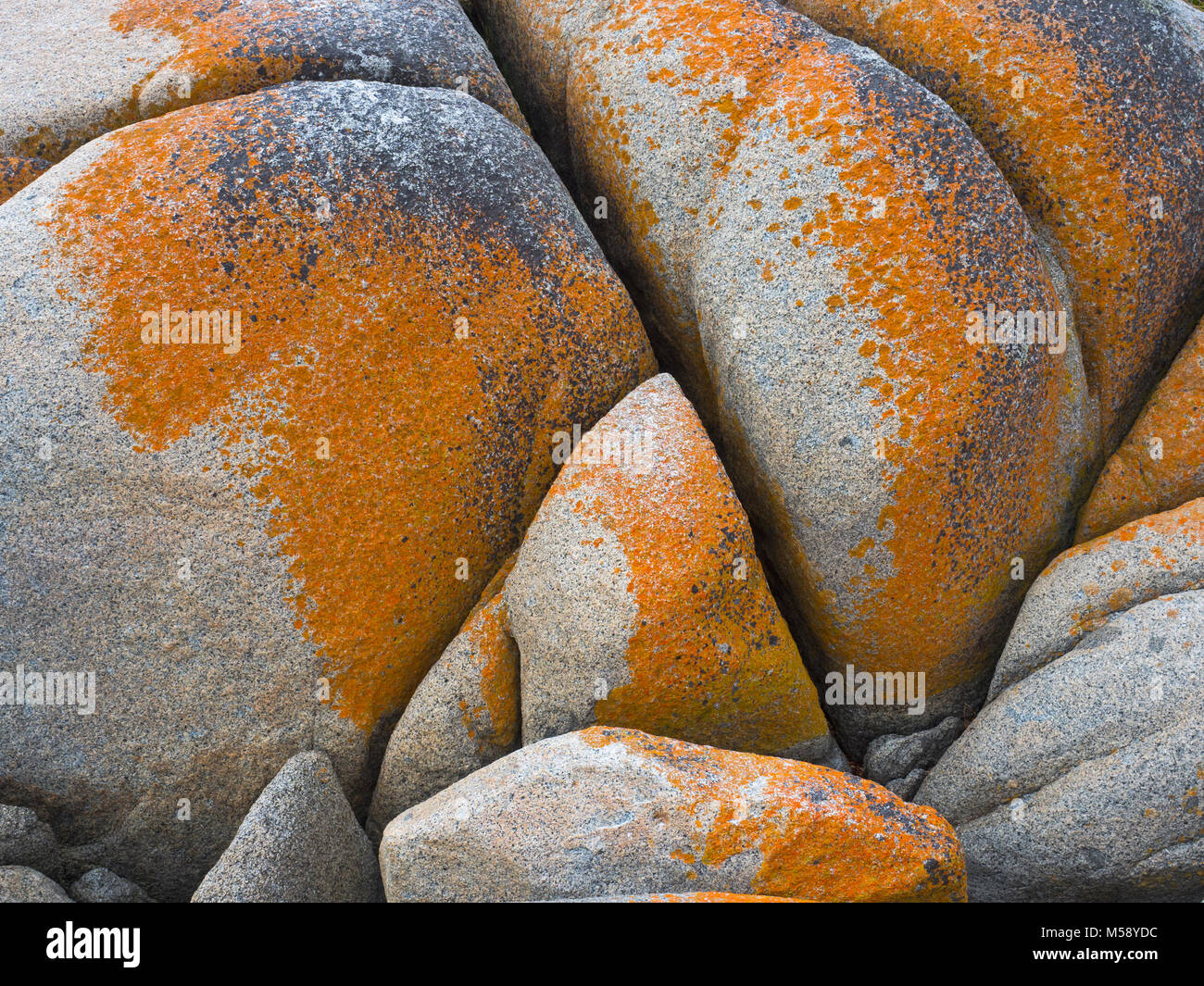 Hazards beach in Freycinet National Park, Tasmania, Australia - Stock Image