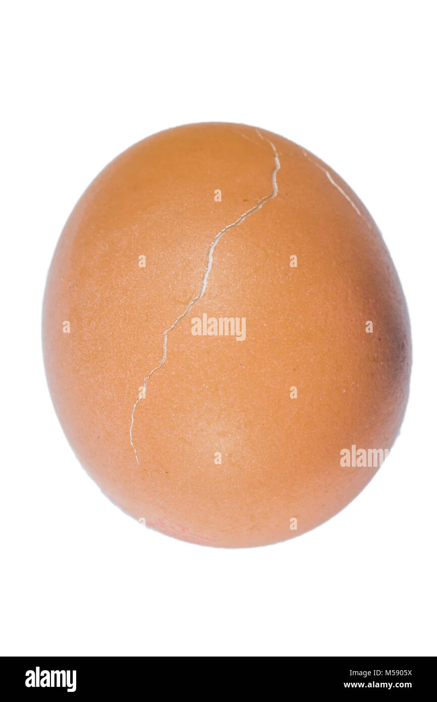 Close up of a brown chicken egg with a transverse crack in its shell on a white background - Stock Image