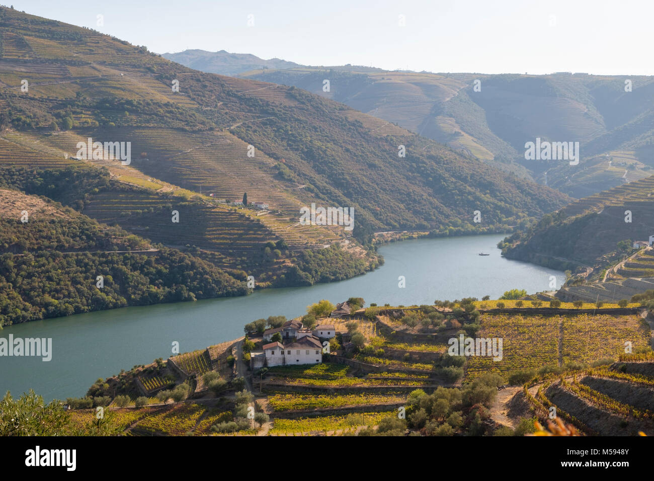 Douro River with river cruise boat  near Pinhao, Douro River Valley, Portugal - Stock Image