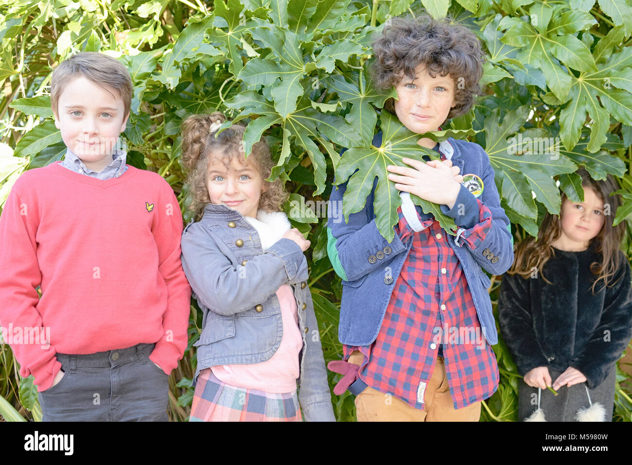 a group of children hide in some green bushes at a park - Stock Image