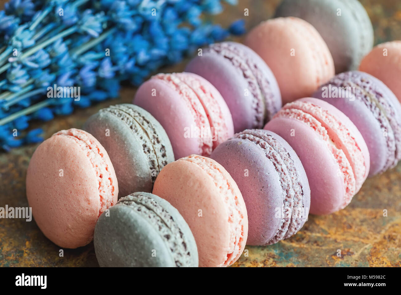 Freshly baked multi-colored berry macaroons close-up with lavender flowers, selective focus. - Stock Image