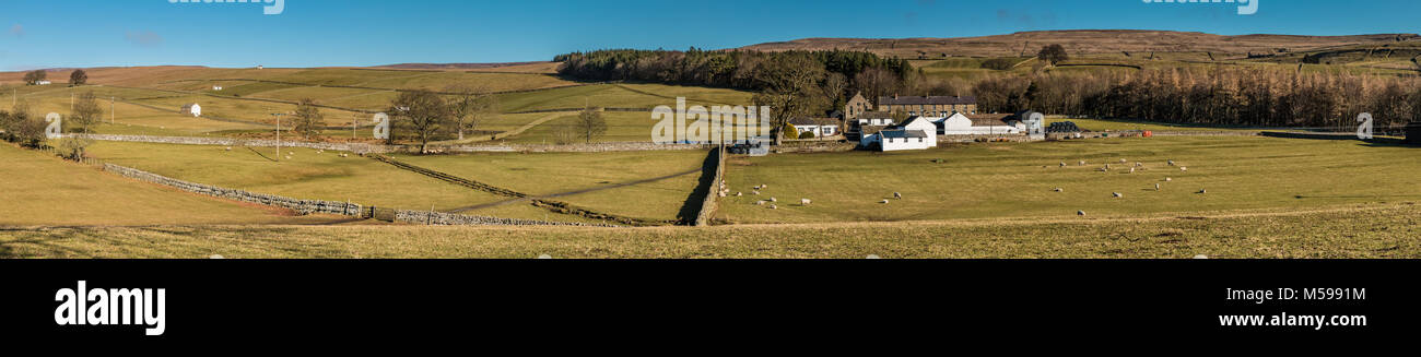 North Pennines panoramic landscape, panorama over Bowlees, Teesdale, UK in fine winter sunshine - Stock Image