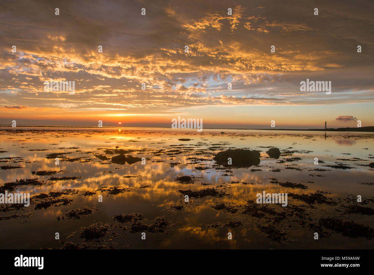golden sunrise over a tranquil sea Stock Photo