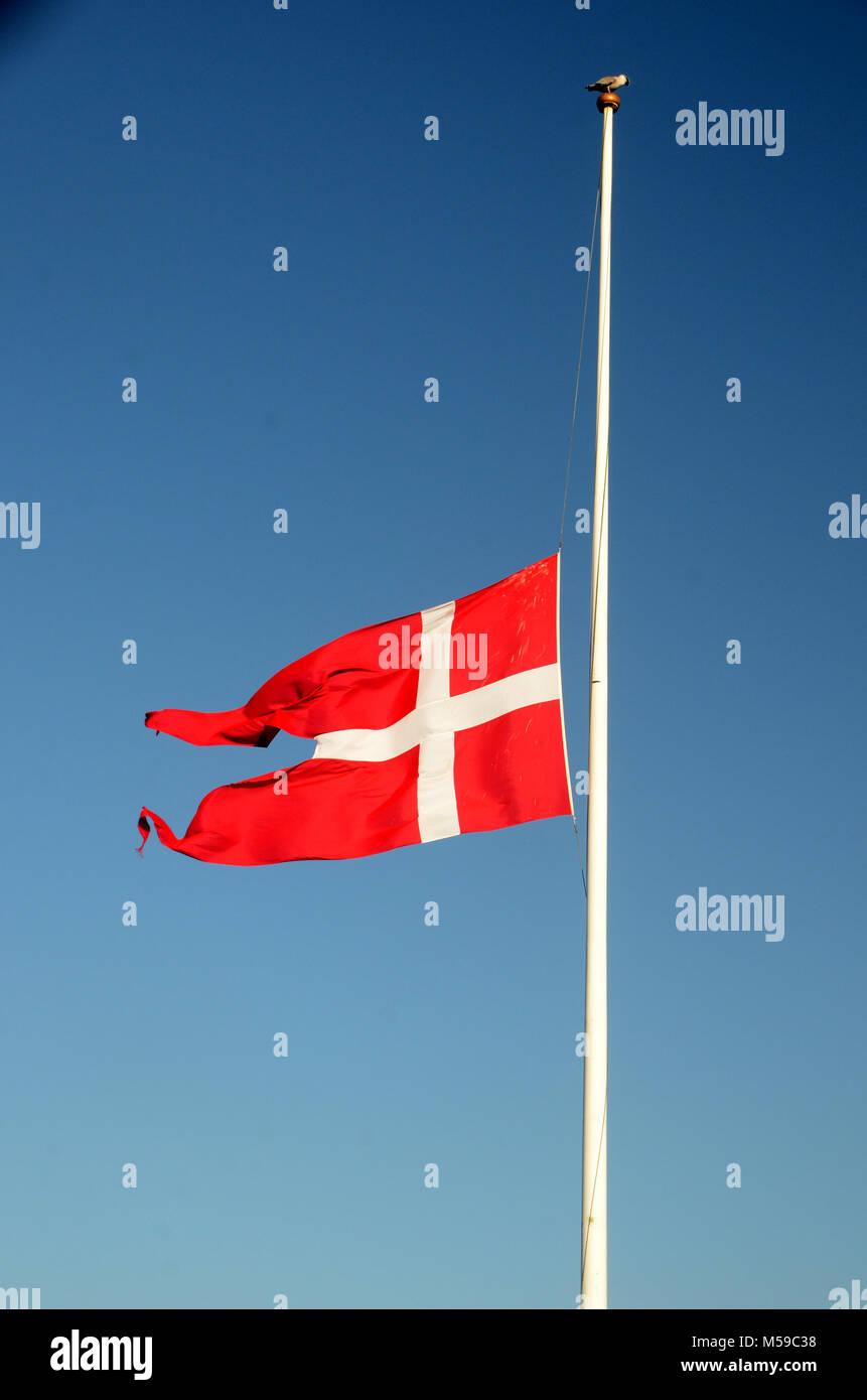 The danish flag Dannebrog on half mast - Stock Image