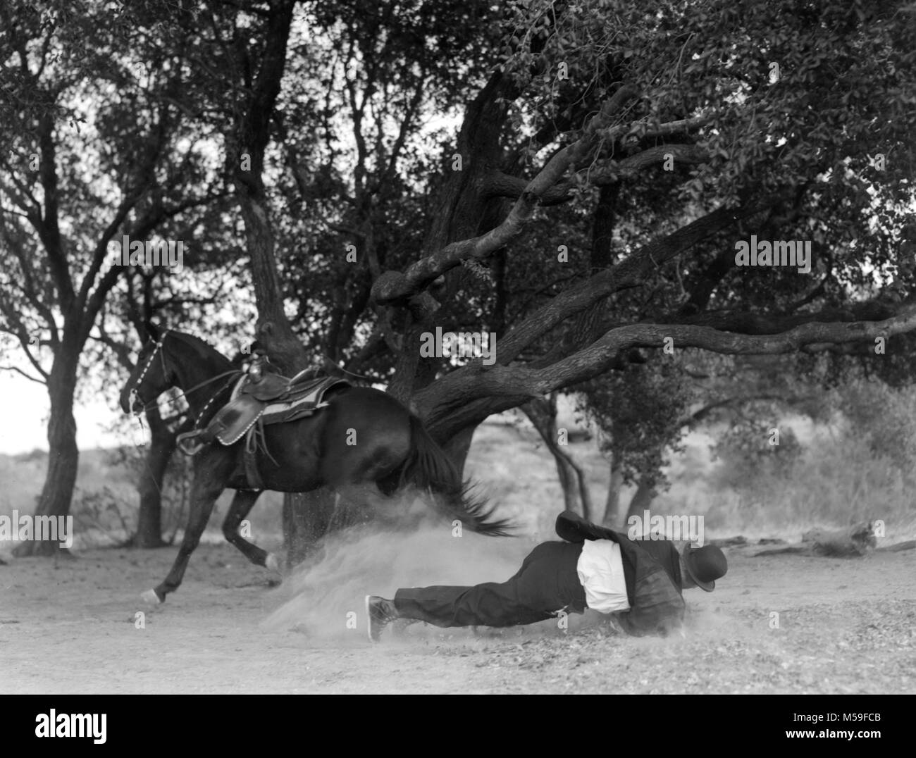 A man, possibly a stunt man,  in a bowler hat hits the ground after falling off a galloping horse, ca. 1920. - Stock Image