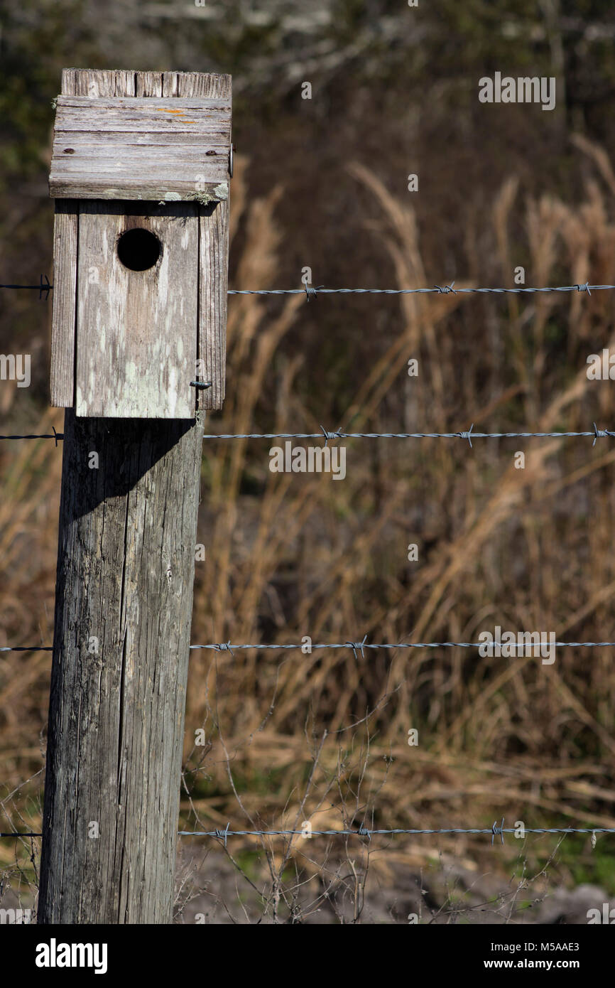 Bird House on a Crooked Fence Post - Stock Image