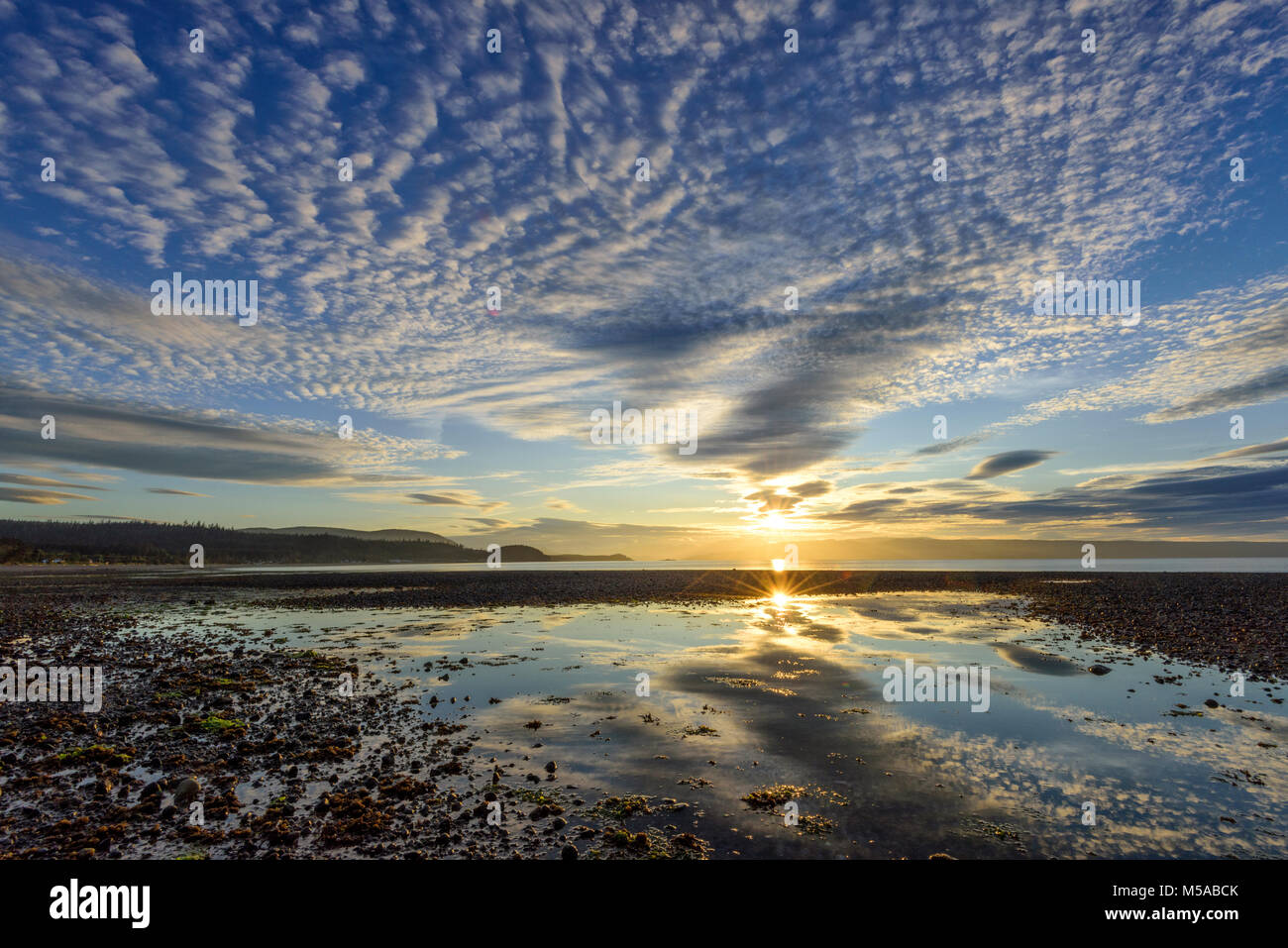 North America, Canada Canadian, British Columbia, Queen Charlotte Islands, West Coast, Moresby Island, sunset at - Stock Image