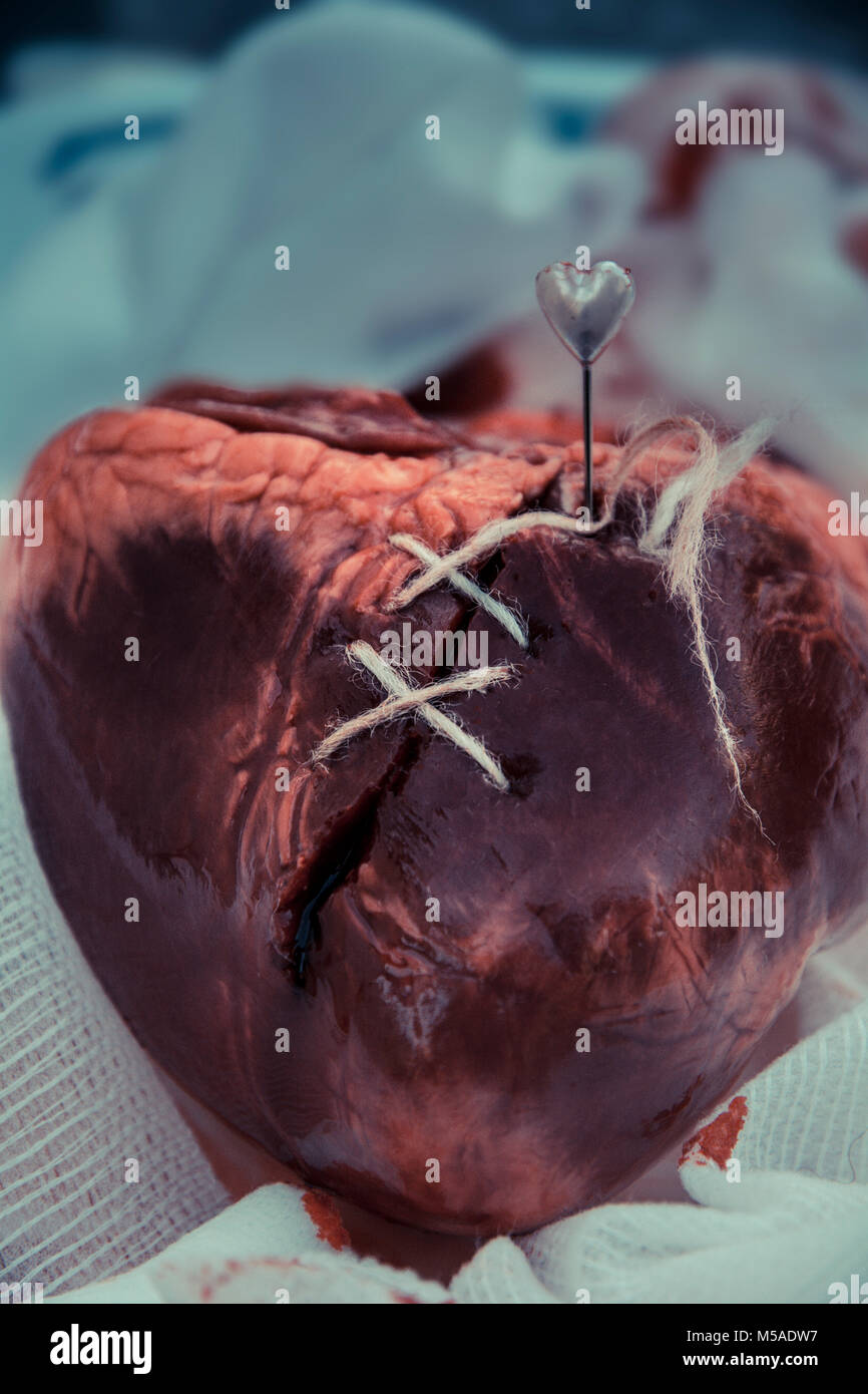 A mended broken heart - stitched - Stock Image