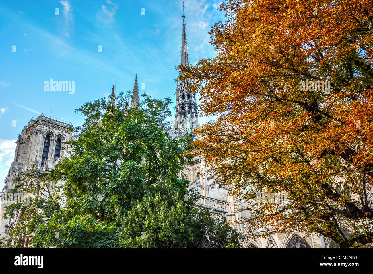 The Notre Dame cathedral with the apostles of Saint Luke climbing the gothic spire on a sunny autumn day in Paris - Stock Image