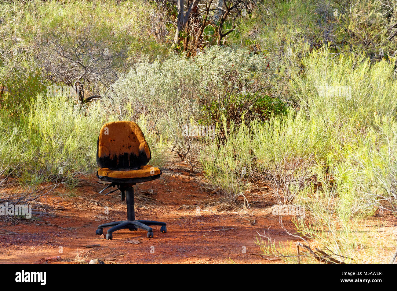 Old office chair in Australian bush land, Murchison, Western Australia - Stock Image