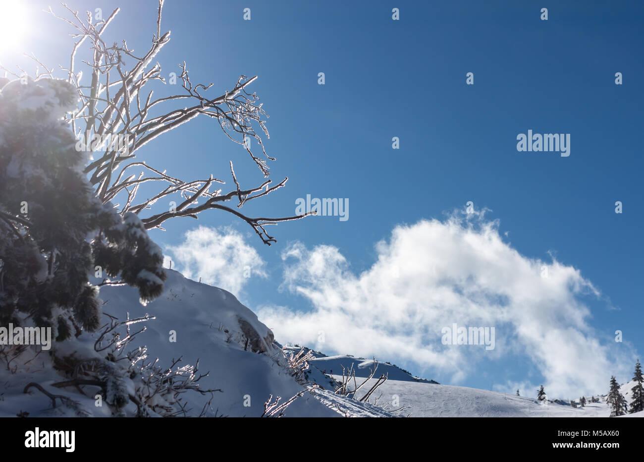 winter ski resort in Alps - Stock Image