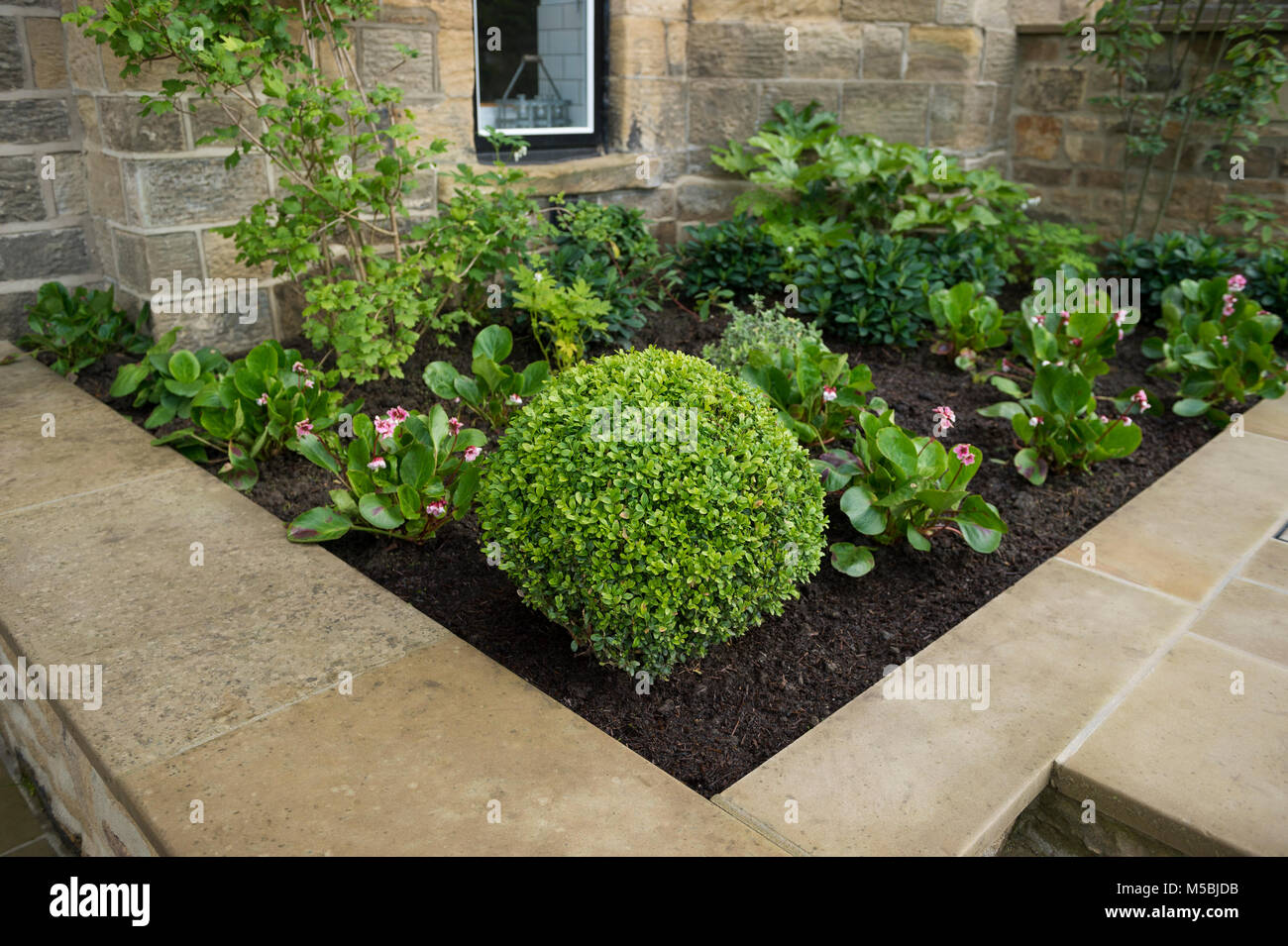 Small Corner Of Beautiful Landscaped Private Garden With Stock