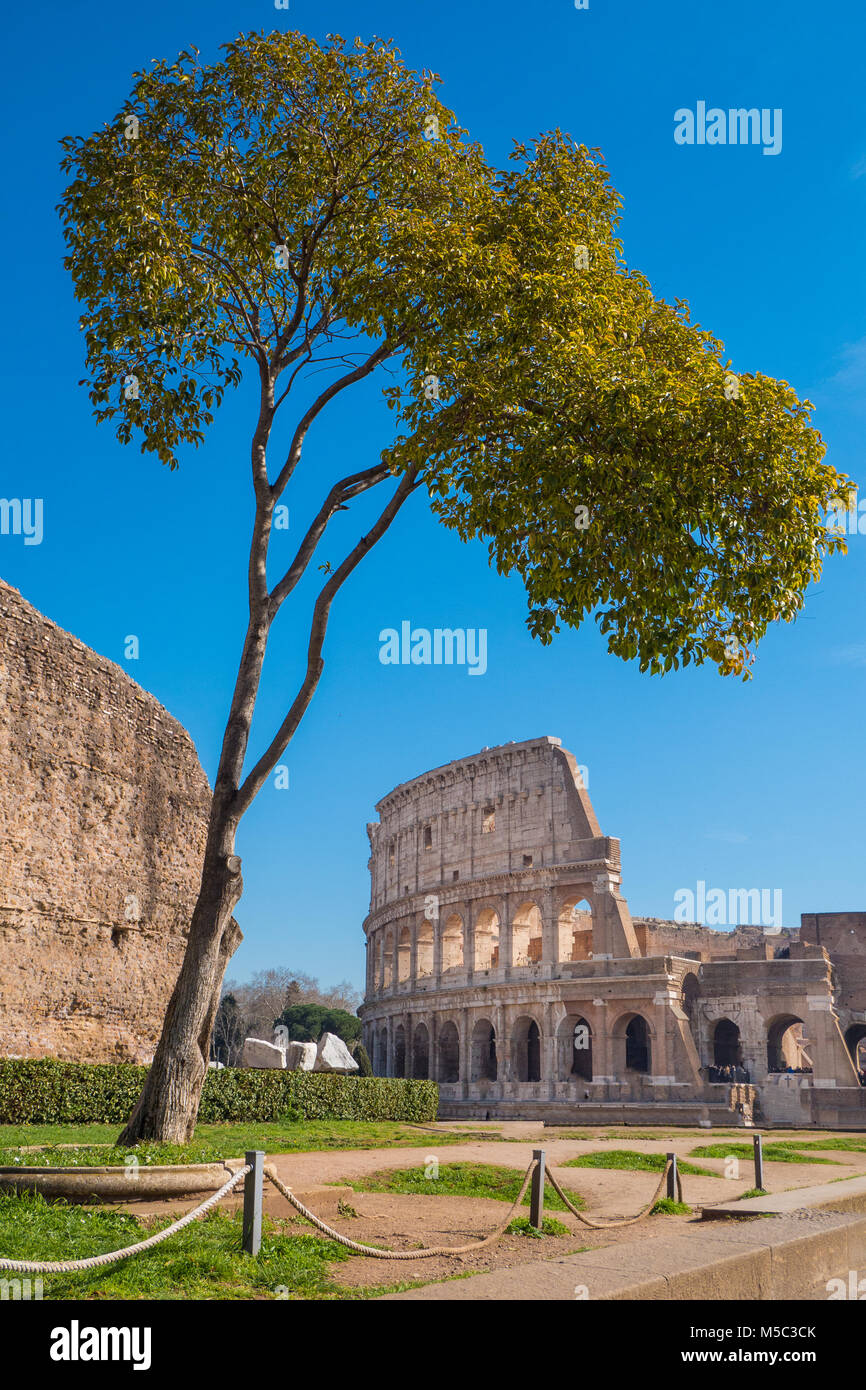 The Roman Colosseum as seen from the Palatine Hill in Rome, Italy Stock Photo