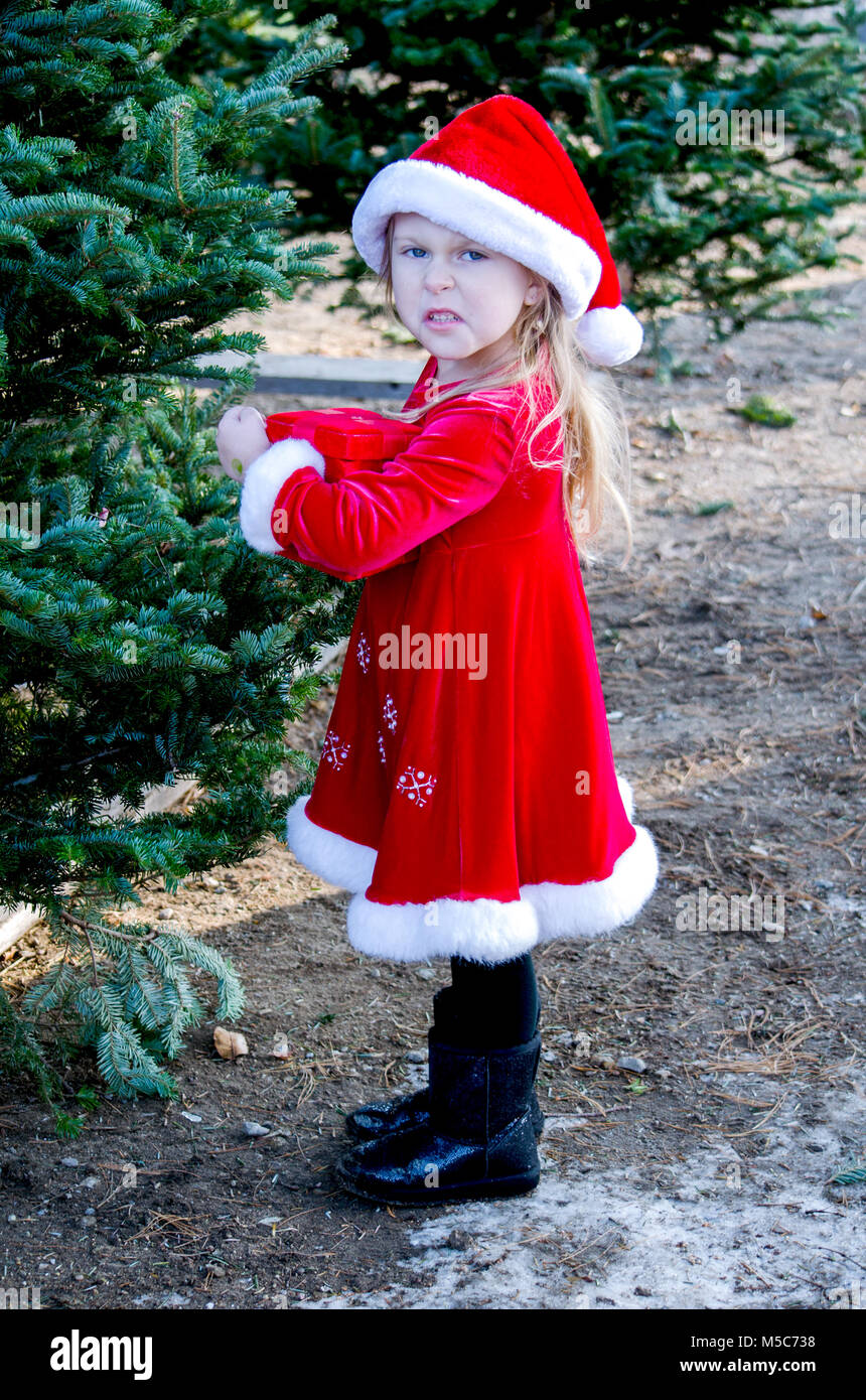 a disgruntled expression on this little girl makes her look like Santa's angry little elf - Stock Image