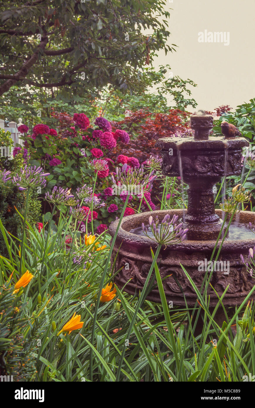 Tiered Fountain in Garden setting - Stock Image