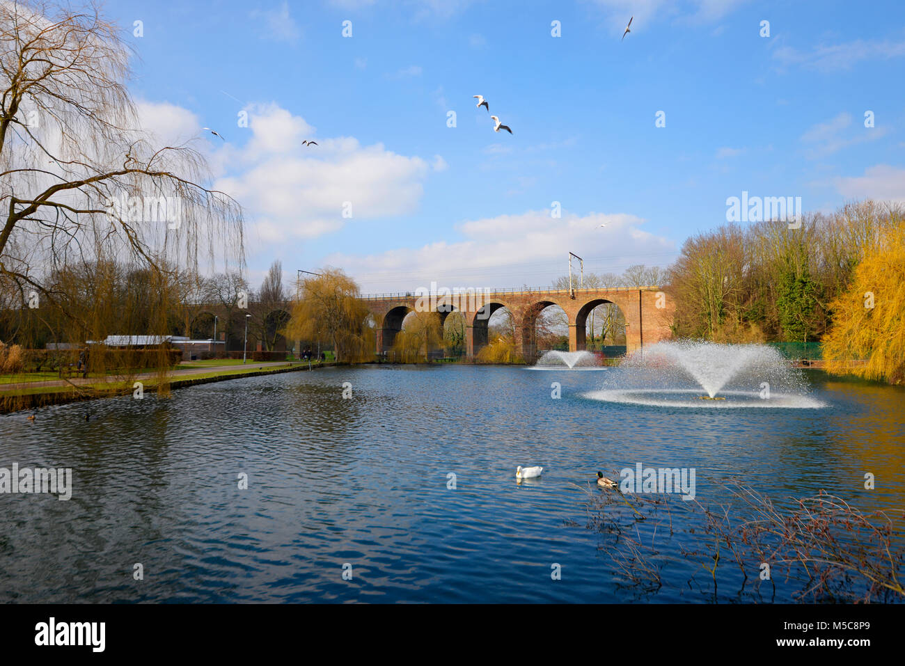 Railway viaduct in Central Park, Chelmsford, Essex. Lake duck pond with fountain. Winter with autumn colours. Fall - Stock Image