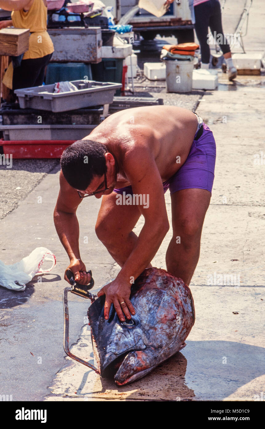 France Marseilles Fisherman with Tuna head. 2000 - Stock Image