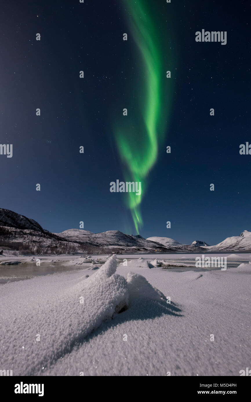 Northern lights over the island of Senja, Troms, Norway - Stock Image