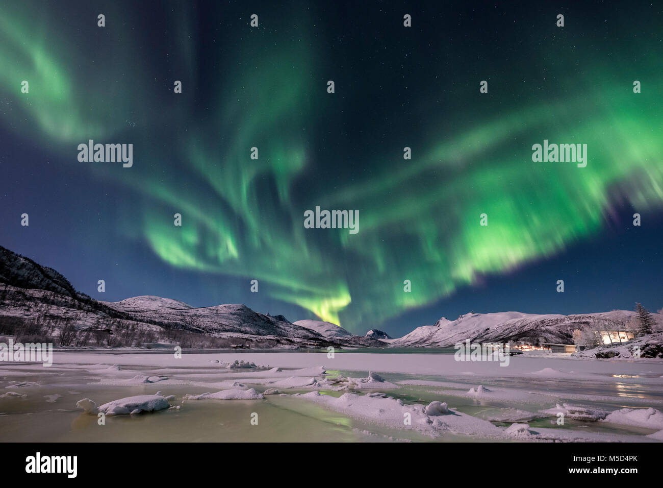 Northern lights over the Senja Island, Troms, Norway - Stock Image
