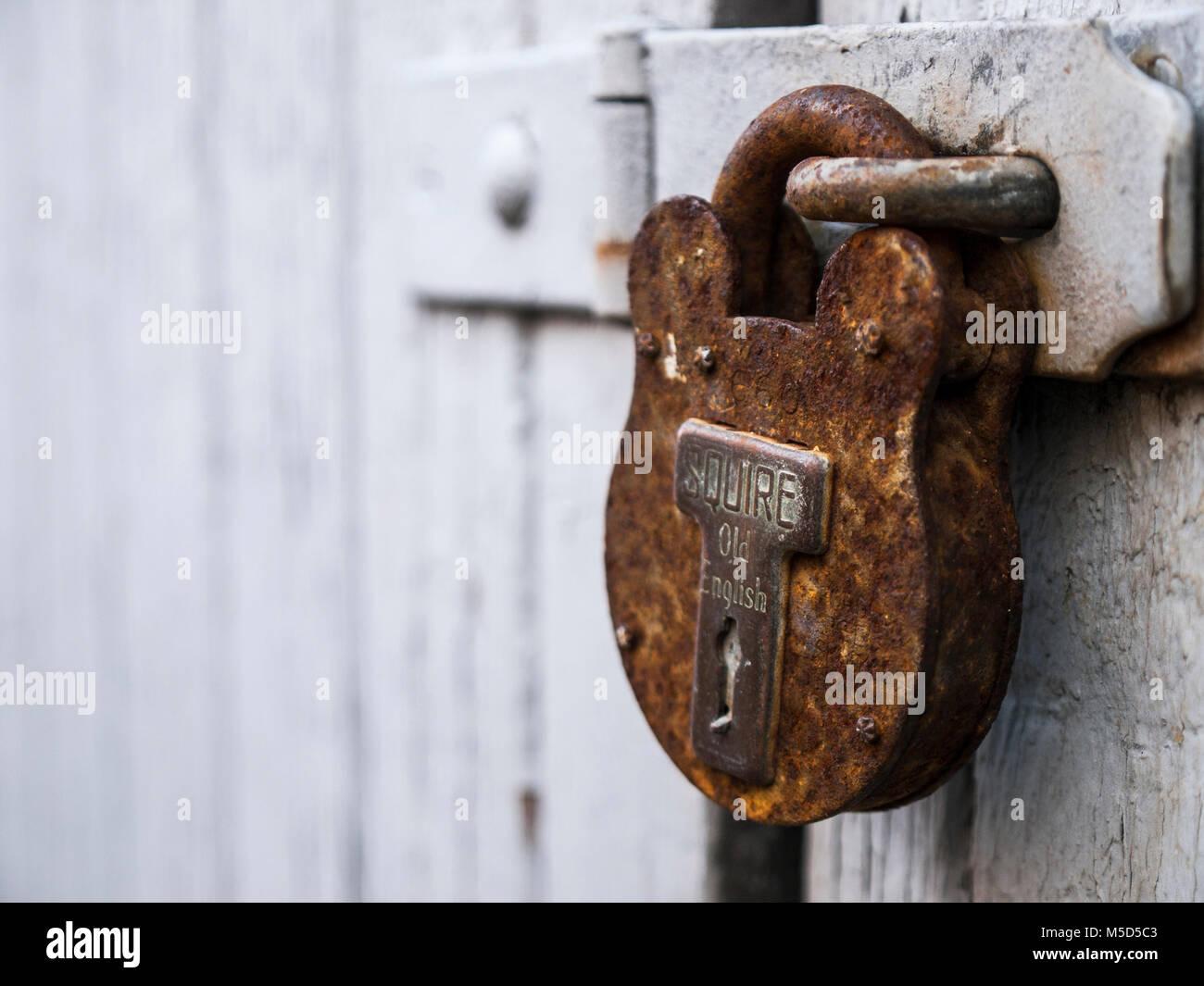 Rusty padlock on old garage door - Stock Image