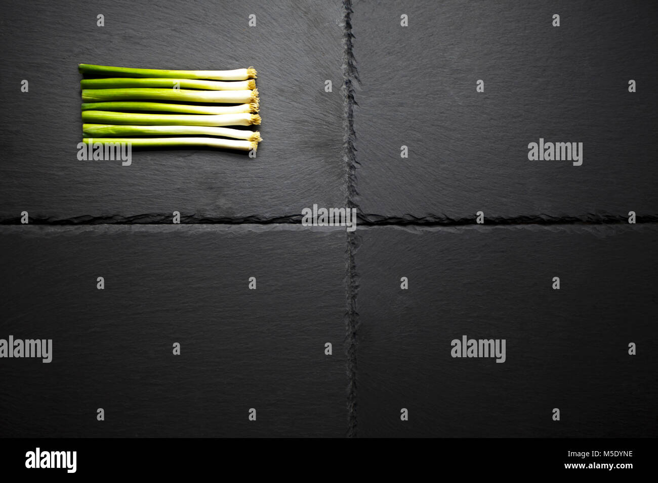 A selection of spring onions of charcoal base. Onions cut and cleaned for uniformity - Stock Image