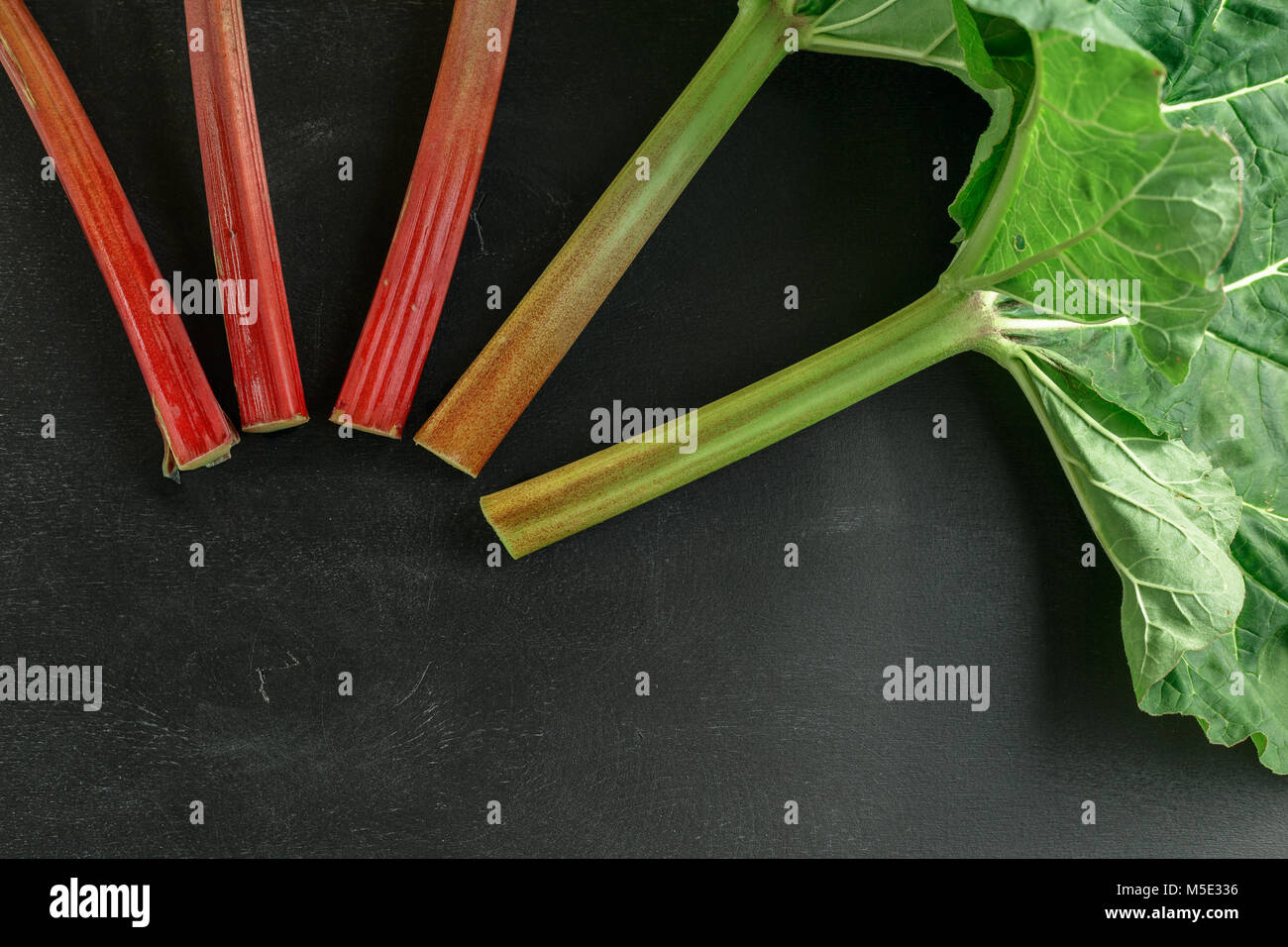 Fresh organic rhubarb stems with leaves on black board wooden background - Stock Image