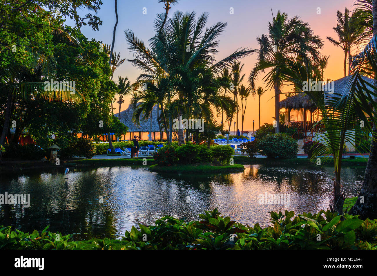Multicolored tropical dawn with pond and palm trees, white pelican and thatched huts in the resort - Stock Image
