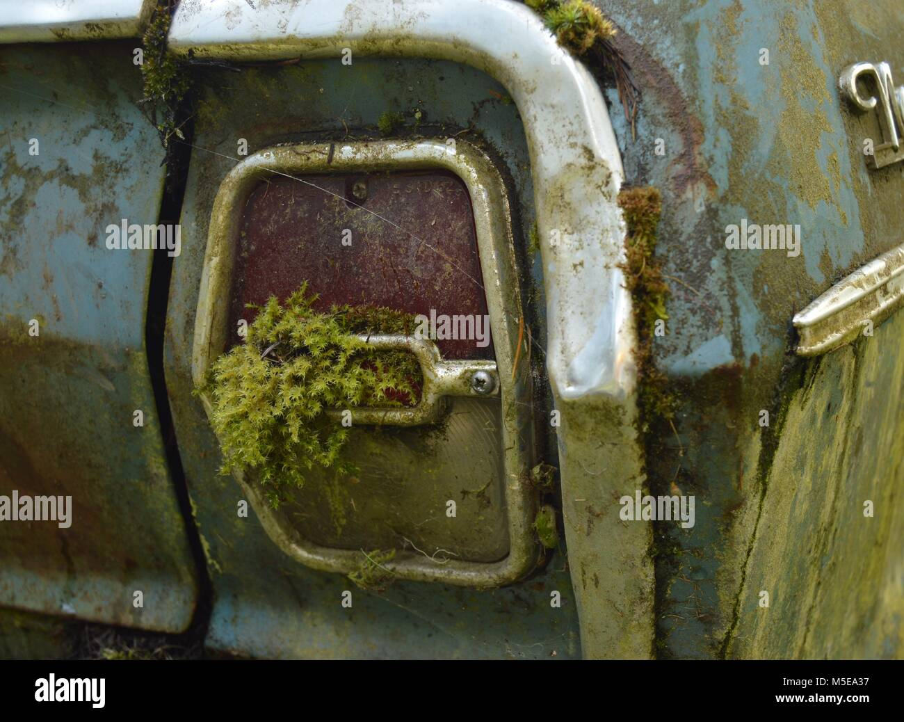moss and lichen growing on taillight of an old abandoned car sitting in the yard Stock Photo